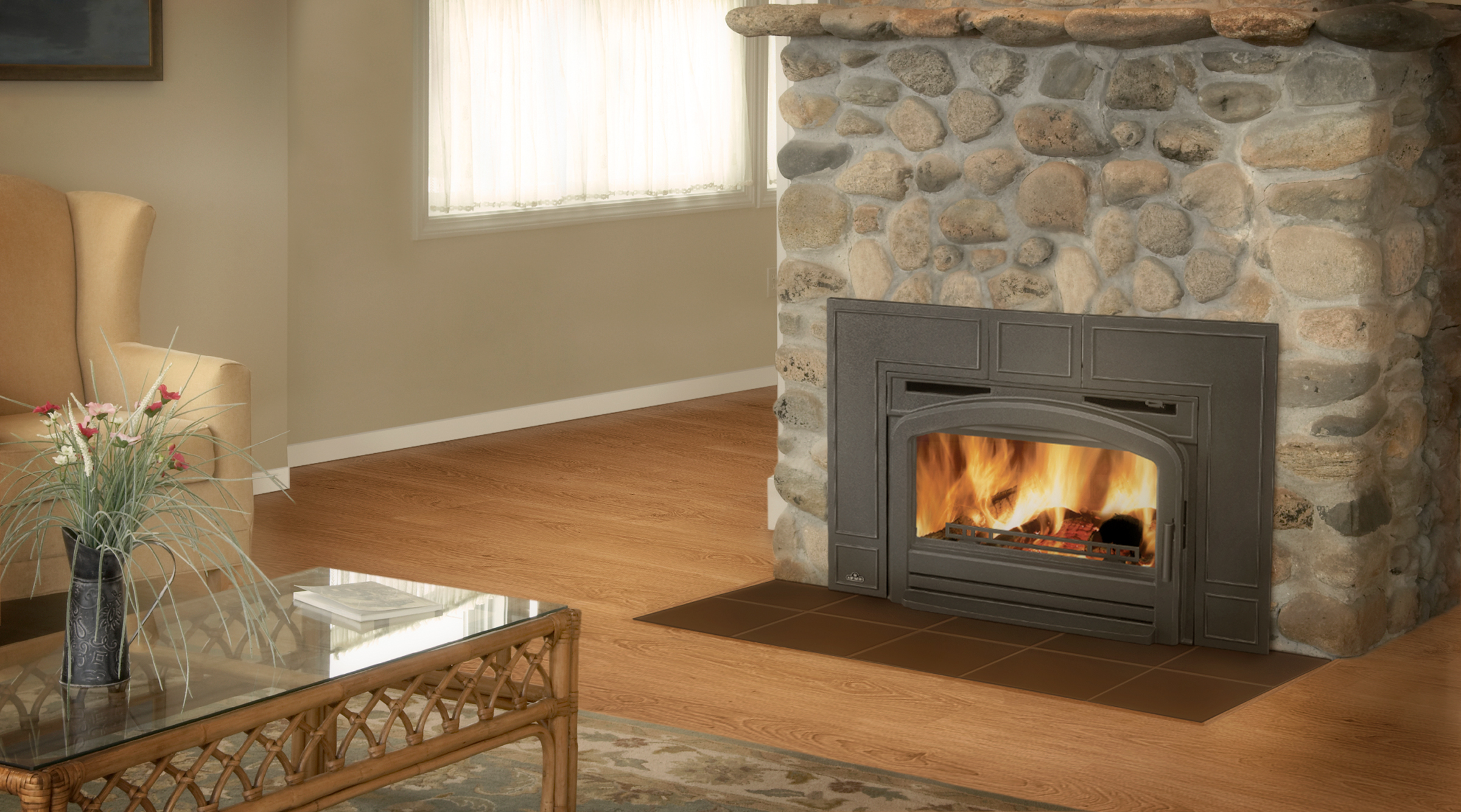 Gas Fireplace Inserts by Napoleon