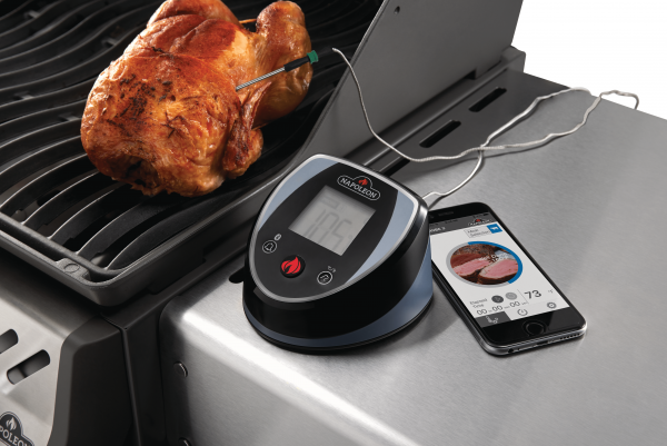 70077-bluetooth-thermometer-in-use-Full Size